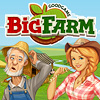 Game details Big Farm