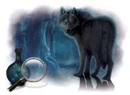 Game details The Curse of Werewolves